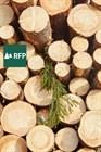 Хабаровский лесопромышленный холдинг откроет новый деревоперерабатывающий завод в Якутии